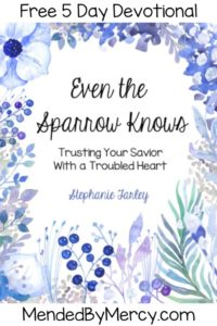 Even the Sparrow Knows: Trusting your Savior with a Troubled Heart Free Devotional